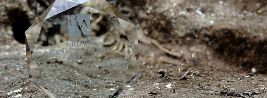 Nominations for the 2014 British Archaeological Awards